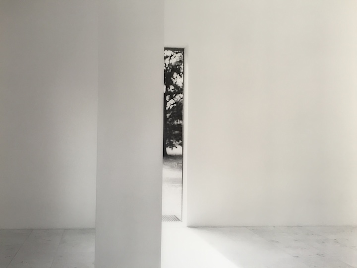 Artist Seton Smith and Curator Ami Barak
